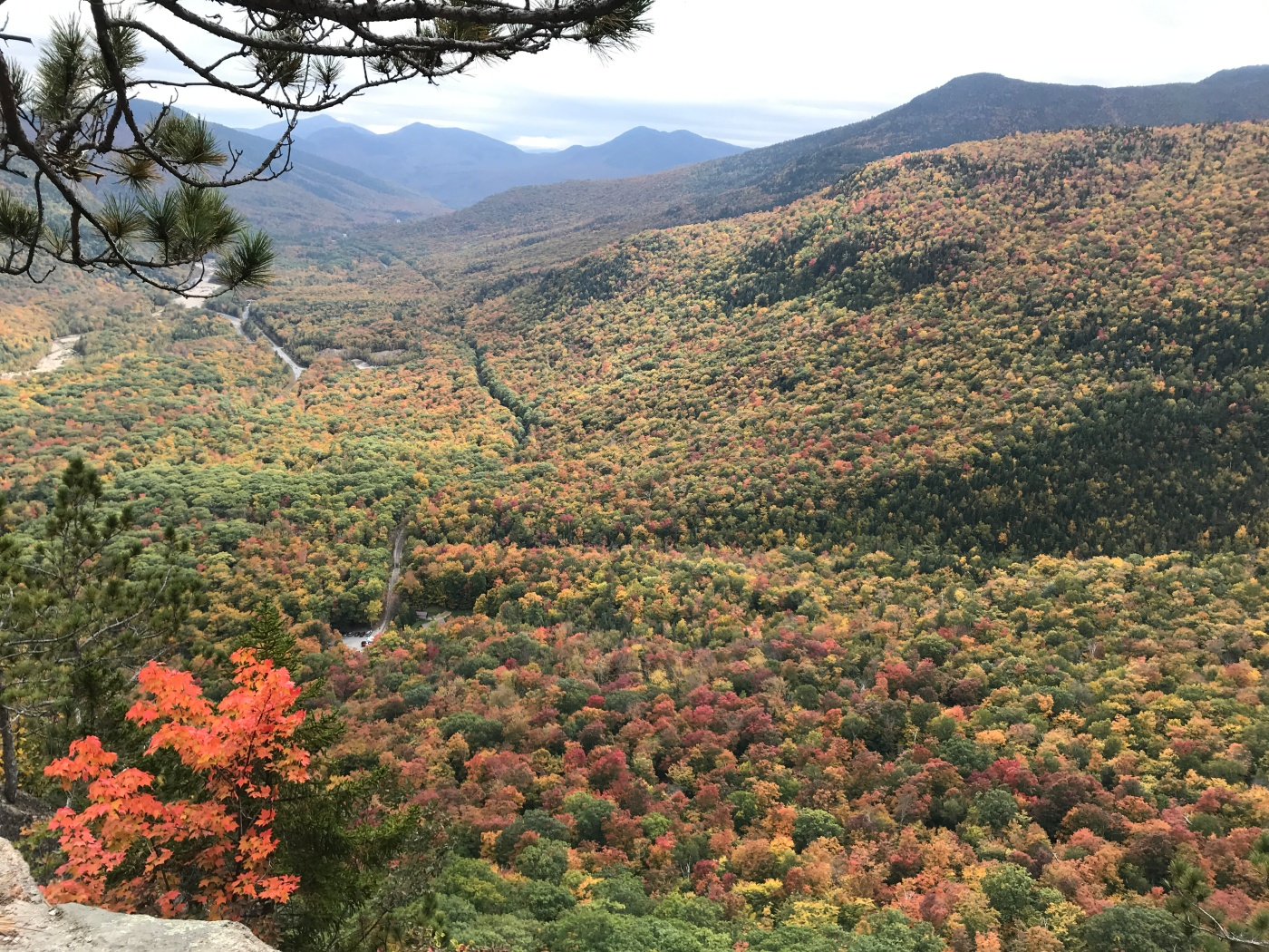 A mountainous landscape covered with trees in the middle of changing colors during the fall.