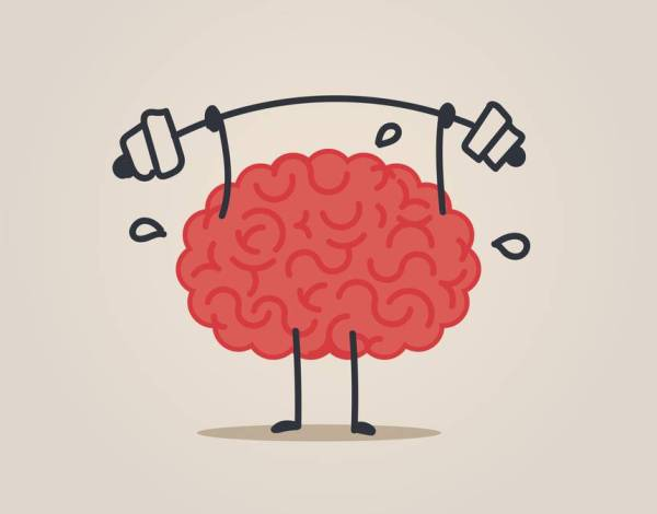 A brain sweating while lifting weights.